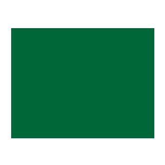 zalgirio arena